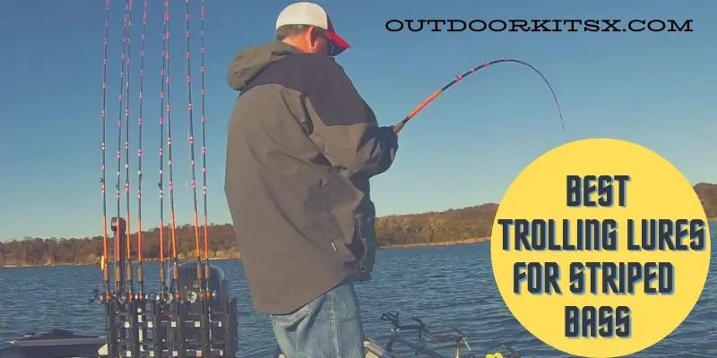 Best Trolling Lures For Striped Bass