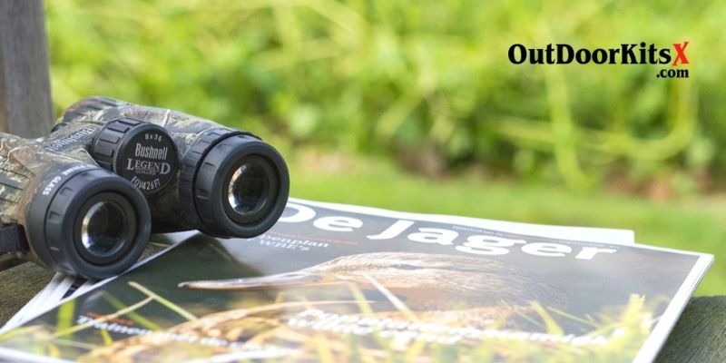 how to choose the Best Binoculars for Birding Under 100 Dollars